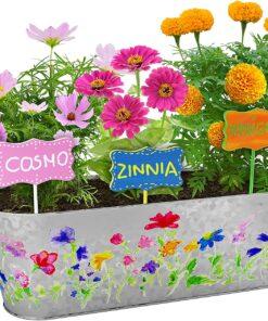 Paint & Plant Kit