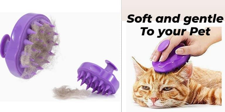Cat presents Dog presents